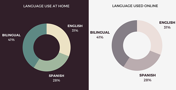 Hispanic Audience Infographic-286655-edited.png
